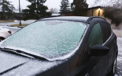 This Brutal Texas Winter Could Teach Us A Thing Or Two